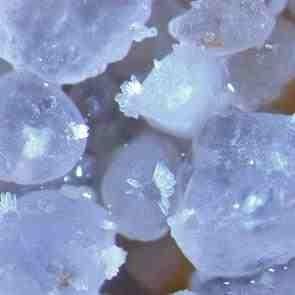 Biomateriales. Núcleos de carbonato precipitado
