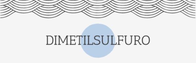 Blog Dimetilsulfuro Ciencia Química